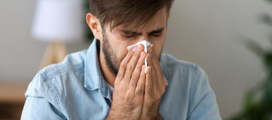 allergies et les traitements efficaces